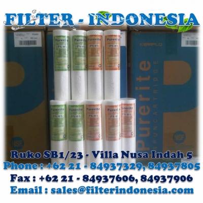 Kemflo Purerite PS 01 20 Filter Cartridge Filter Indonesia  large2