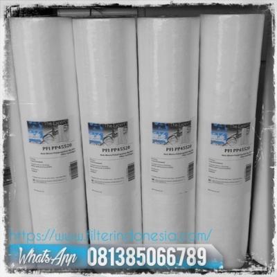 PP45 Big Blue Cartridge Filter Indonesia  large2
