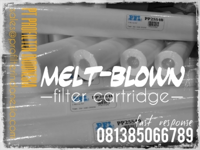d PP25 Meltblown Cartridge Filter Indonesia  large2